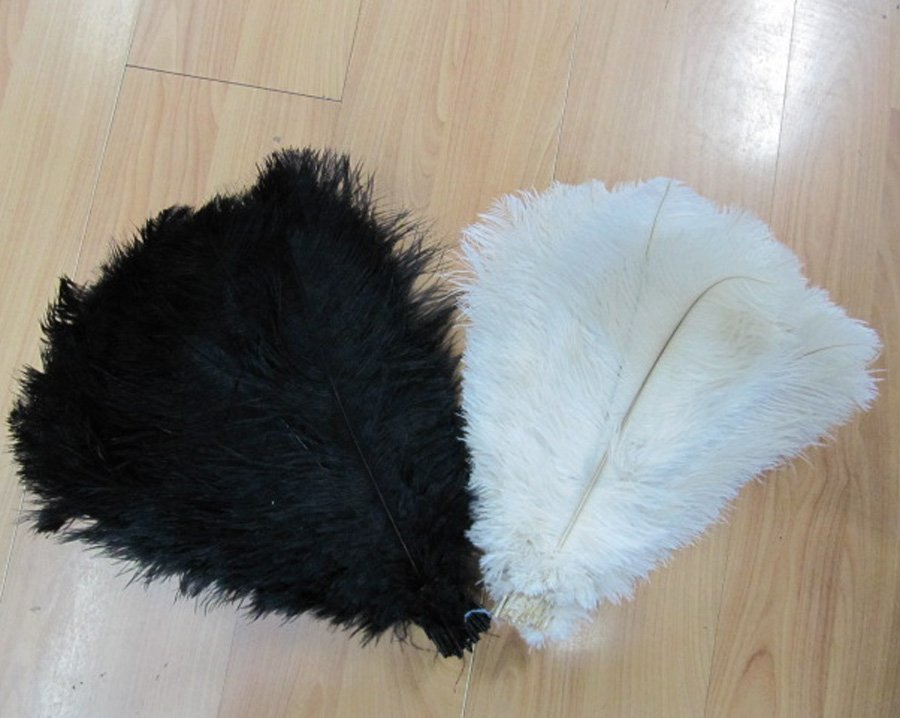 10-12inches ostrich feather