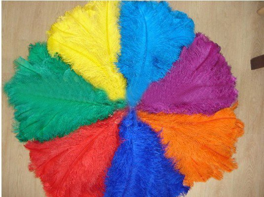 16-18inch ostrich feather